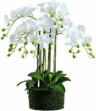 Bonsaï Fleur Artificielle, Plante Artificielle,