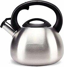 Bouilloire à sifflet en 304 bouilloire en acier