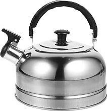 Bouilloire à thé bouilloire en acier inoxydable