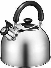 Bouilloire à thé pour plaque de cuisson,