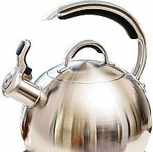 Bouilloire à thé sifflante, théière en acier