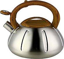 Bouilloire en acier inoxydable avec bruit, grande