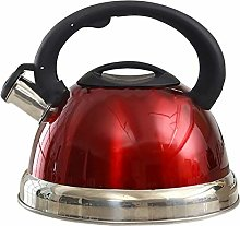 Bouilloire sifflante 3l Kettle Stainless Steel