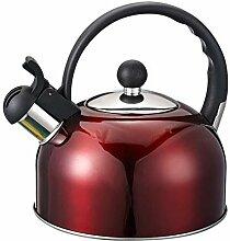 Bouilloire sifflante BOUILLOIRE for le gaz