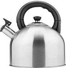 Bouilloire sifflante en acier inoxydable 304 pour