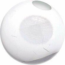 Boule de cristal verre sphère affichage pissenlit