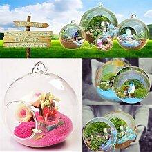 Boule suspendue en verre transparent, pot de
