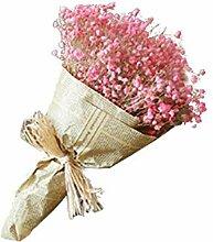 Bouquet De Fleurs Sèches Naturelles Séchées