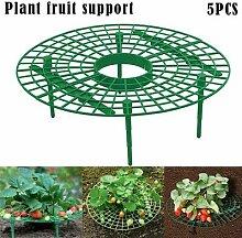 Cadre de plantation de fraises, 1 pièce, Support