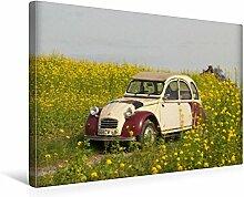 CALVENDO Premium Toile textile 45 x 30 cm Format