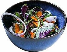 CESULIS Grand bol créatif japonais pour salade de