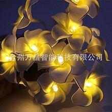 CFLFDC Guirlande lumineuse 2m 20 Lampe Pe
