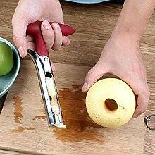 CHANG Vide-Pomme en Acier Inoxydable Outil avec
