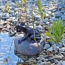 CLGarden Figurine/gargouille pour bassin en forme