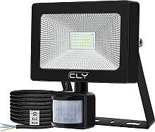 CLY Projecteur LED avec Détecteur de Mouvement