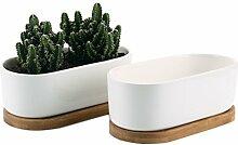 ComSaf 17cm Pot de Succulent en Céramique avec