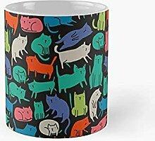 Cool chats drôle drôle mignon coloré animal de