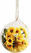 Cratone Vase à fleurs en verre à suspendre pour