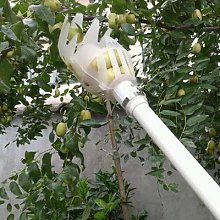 Cueilleur de Fruits onvenent, outil de jardinage,