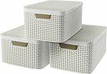 CURVER Lot de 3 Boîtes avec Couvercle - 3 Caisses