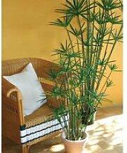 Cyperus Papyrus artificiel en pot, vert, 180 cm -