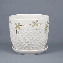 CYQ Pot de Fleur d'intérieur en céramique