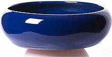 Damian Canovas Pots de fleurs en émail Bleu