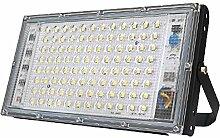 DANQI Projecteur Extérieur à LED 100W Lumière