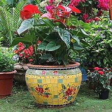 Darenbp Extérieur/Intérieur Grand jardin en