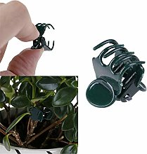 ddmlj 100 Pcs en Plastique Plante Fix Clips