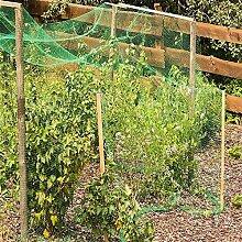 ddmlj Filet À Oiseaux en Maille pour Jardin