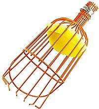 ddmlj Fruit Picker Wire Picker Outil De Cueillette