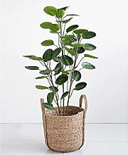 Déco Bonsaï 3.6ft Plante Artificielle Fortune