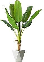 Déco Bonsaï 4ft Plante Artificielle Banane Arbre