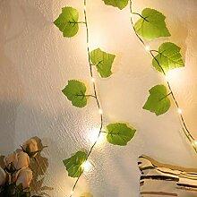 DEDC 2M 20 LED Fleur Feuille Verte Rotin Guirlande