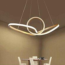Délicate simplicité lustre LED moderne Lampe