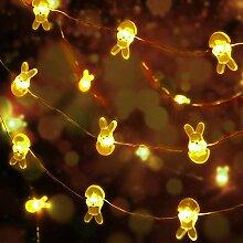 DINOWIN Guirlande Lumineuse LED à Piles 30 LED