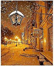 DIY Peinture par Numéro Lampe à neige-Frameless