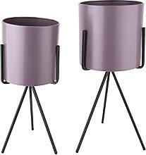 Duo de Cache-Pot Pedestal XL - Viole