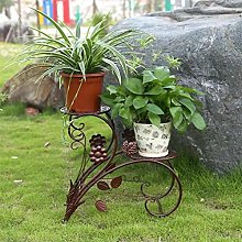 Élégant Élevé Herb étage fleur affichage
