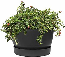 elho Greenville Coupe Cache-pot, Living Noir, 33 cm