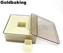 Emporte-pièce carré en Nylon pour biscuits, 9