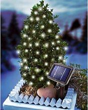 Esotec 102160 Luminaire de Jardin sur batterie