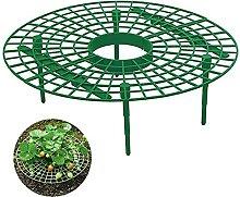 EssenceLiving Lot de 10 supports pour plantes de