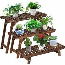 Étagère pour plantes en bois 3 niveaux echelle