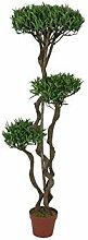 Europalms 82511510 Arbre à bonsaï 130 cm