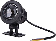 Evazory 10W RGB LED Fontaine Lumineuse Piscine