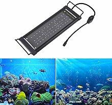 Evazory Aquarium Lampe Aquarium Led Aquarium