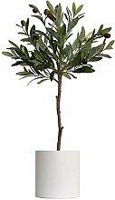 Fausse Plante Verte Olivier artificiel dans un