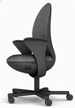 Fauteuil de bureau ergonomique xray